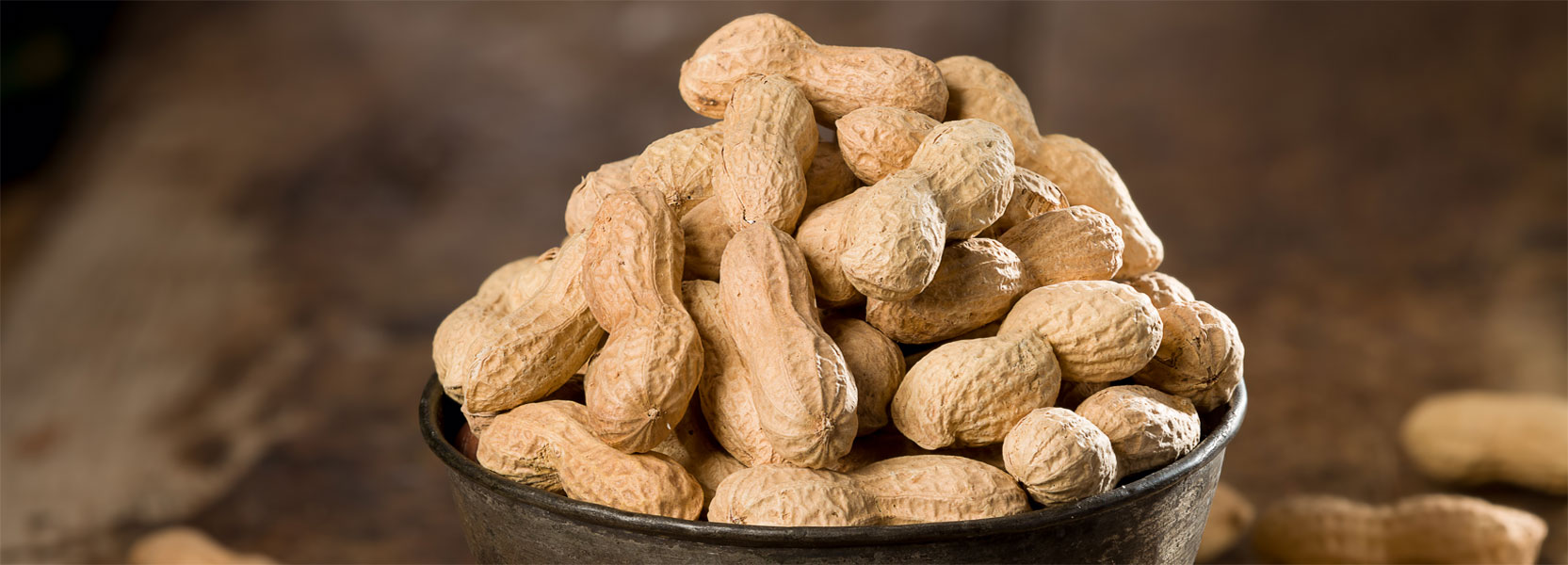 banner-bowlpeanuts