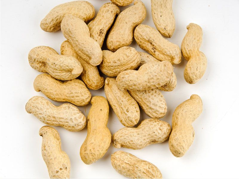 Basic Peanut Preparation